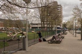 Schalk Burgerplein - kinderboerderij Woelige Stal-1