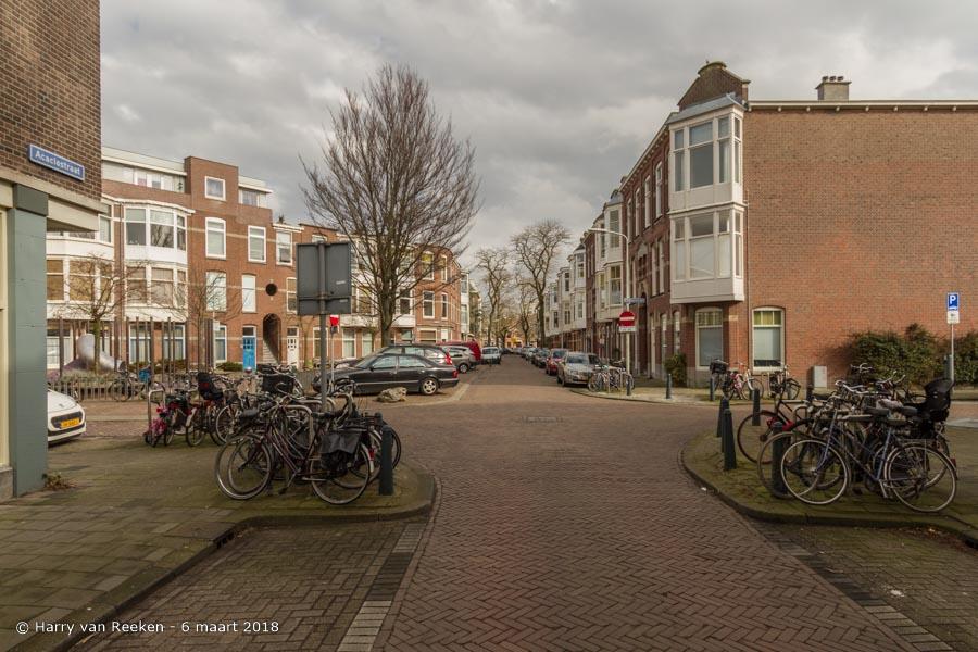 Acaciastraat-Plantaanstraat-wk12- (1 van 1)