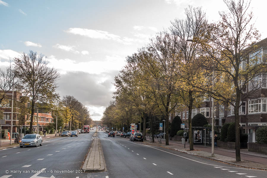 Alkemadelaan, van - Benoordenhout -05