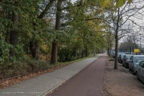 Alkemadelaan, van - Benoordenhout -03