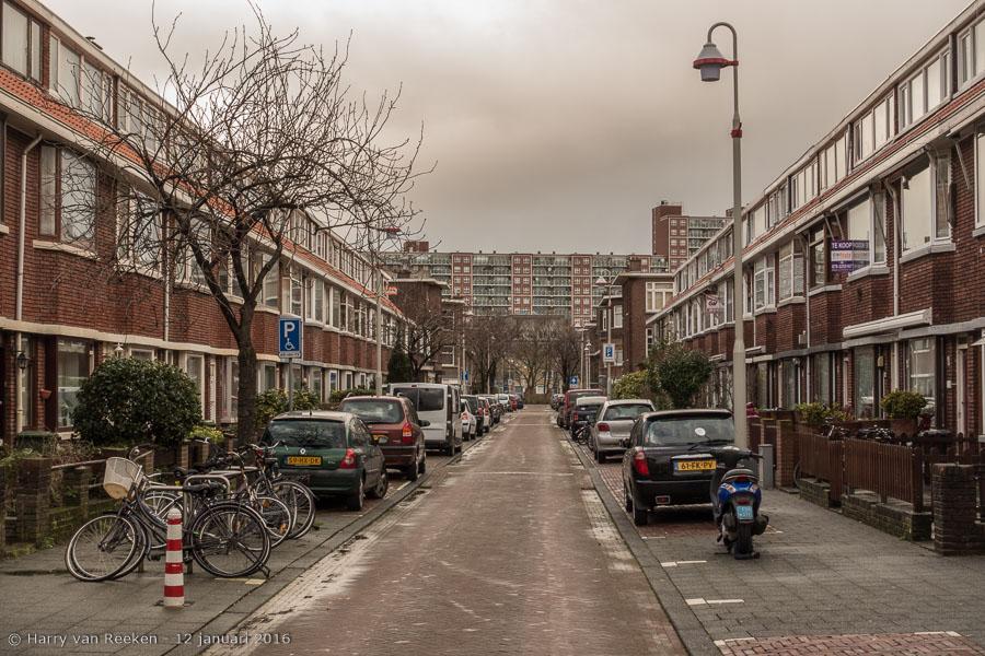 Berghstraat, van den-3