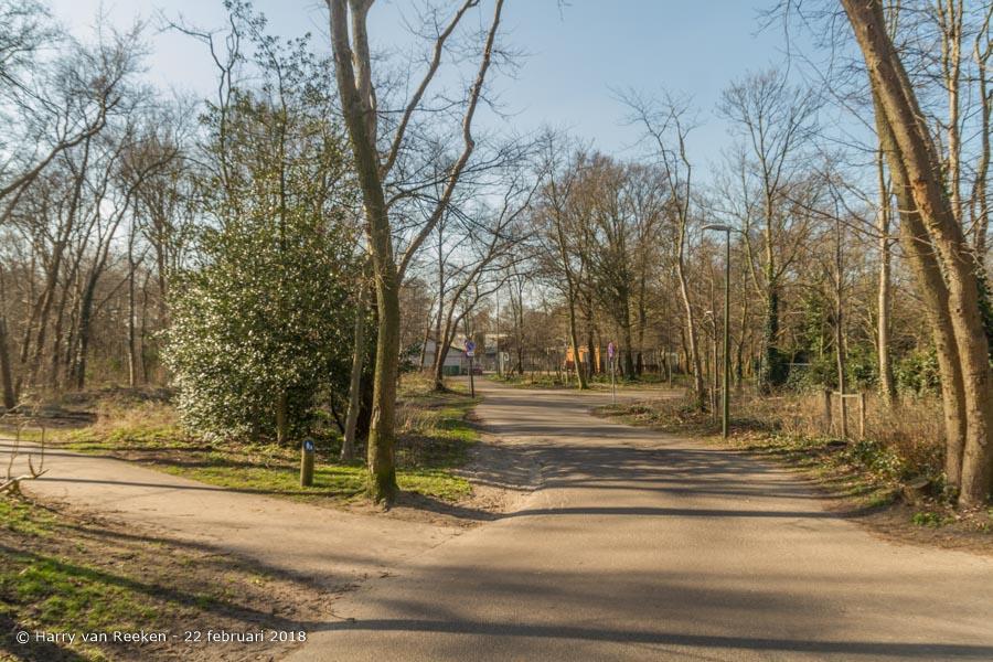 Bosjes van Pex-wk12-02