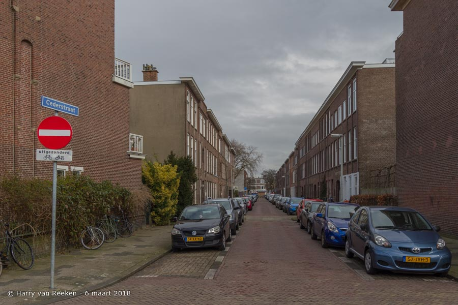 Cederstraat-wk12-06