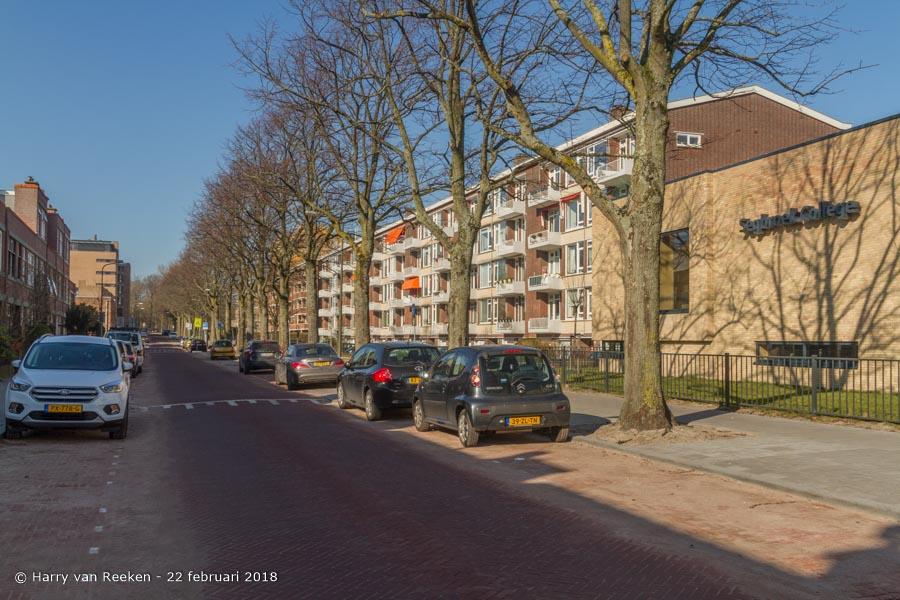 Daal en Bergselaan-wk12-11