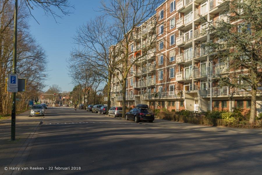 Daal en Bergselaan-wk12-13