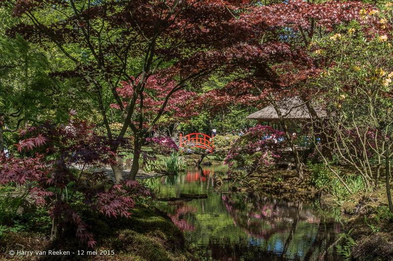 Japanse Tuin-10