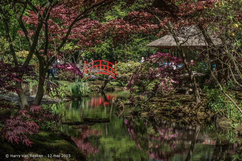 Japanse Tuin-11