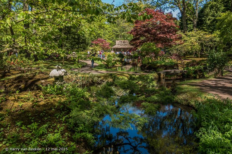 Japanse Tuin-8
