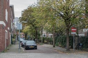 Dedelstraat - Benoordenhout-2