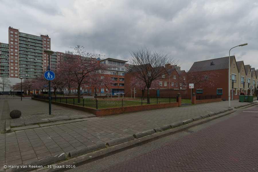 Diesenstraat, van-1