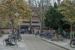 Dreibholtzstraat - Benoordenhout-3