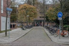 Dreibholtzstraat - Benoordenhout-4
