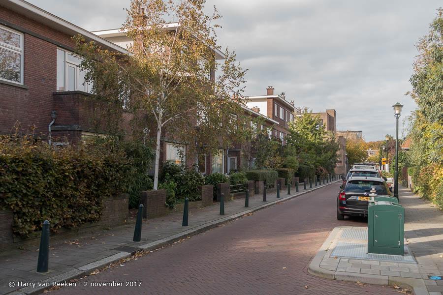 Duchattelstraat - Benoordenhout-2