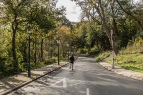 Duinweg - Van Stolkpark-Schev01_2