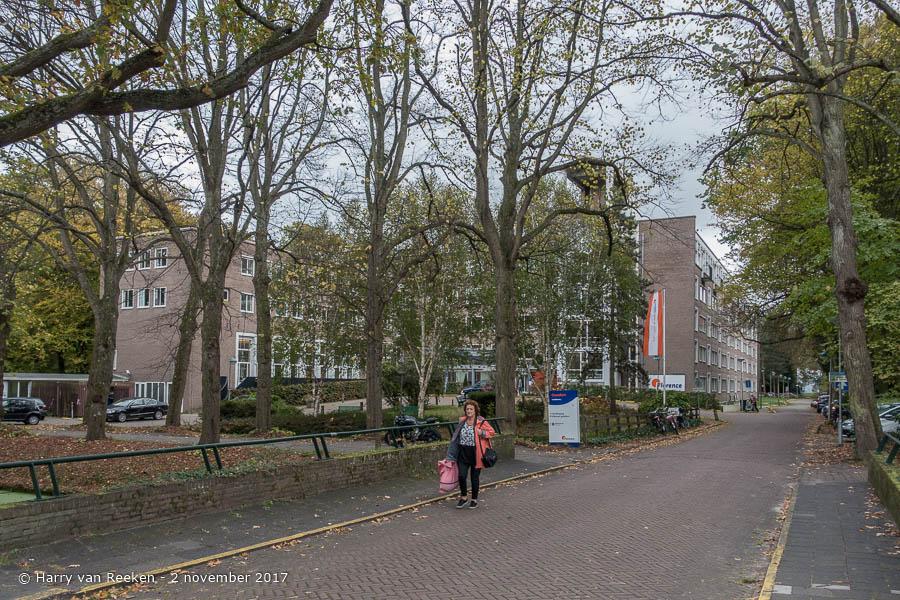 Goetlijfstraat - Benoordenhout-9