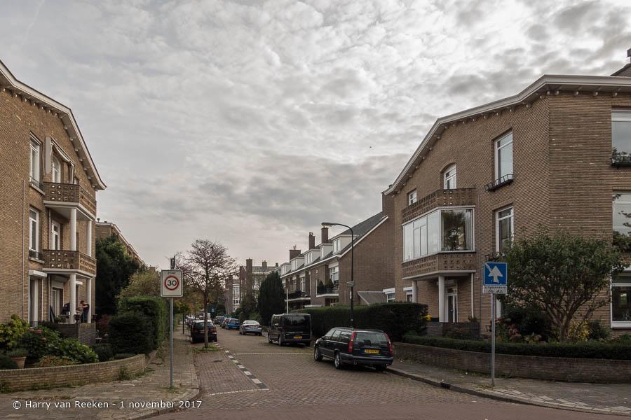 Hanedoesstraat - Benoordenhout-1