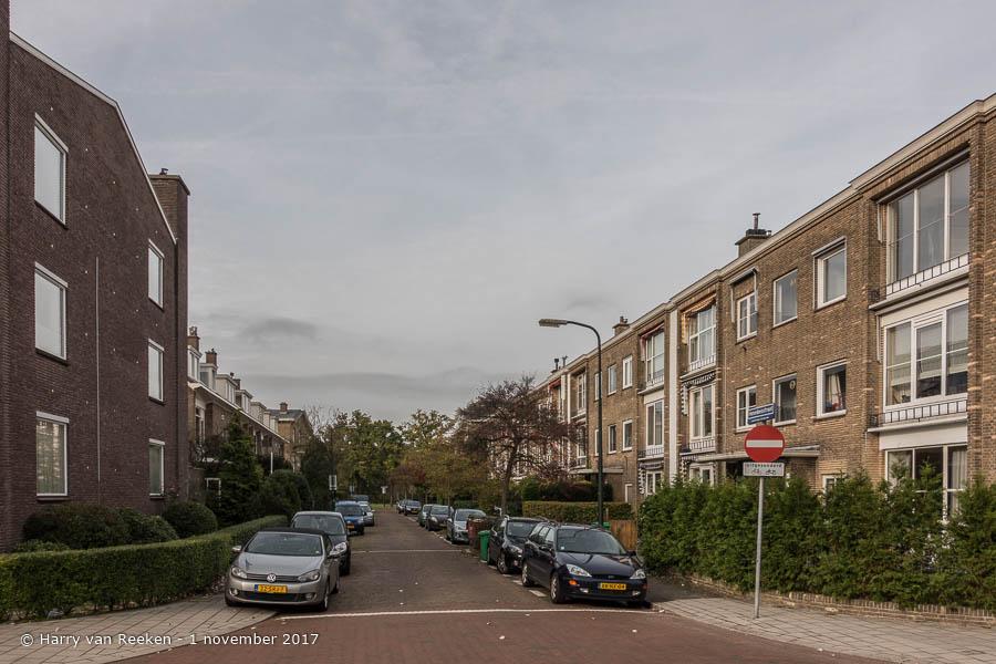 Hanedoesstraat - Benoordenhout-2