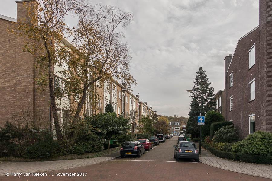 Hanedoesstraat - Benoordenhout-3