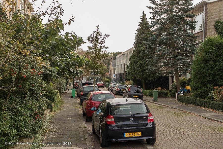 Hanedoesstraat - Benoordenhout-4