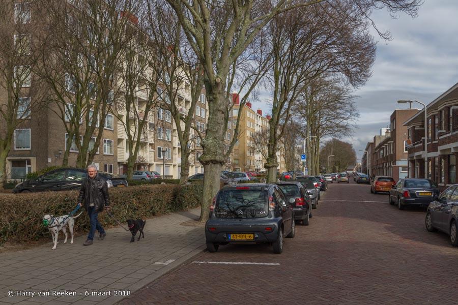 Hanenburglaan-wk12-10