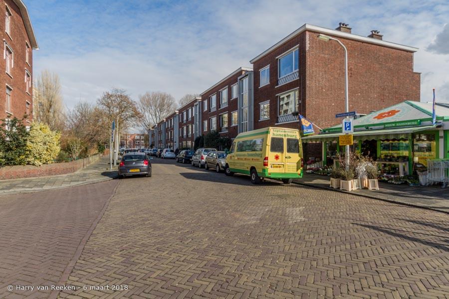 Hanenburglaan-wk12-14
