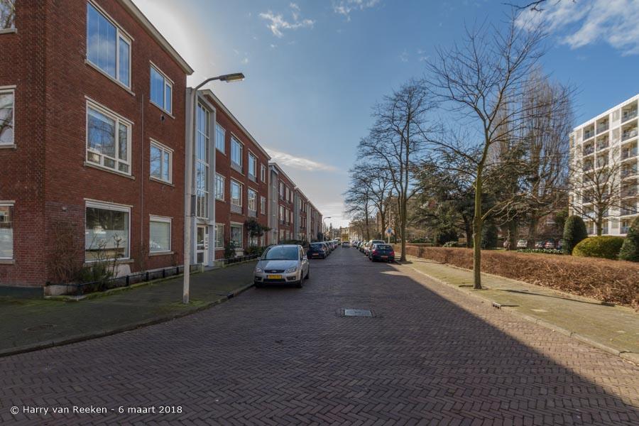 Hanenburglaan-wk12-17