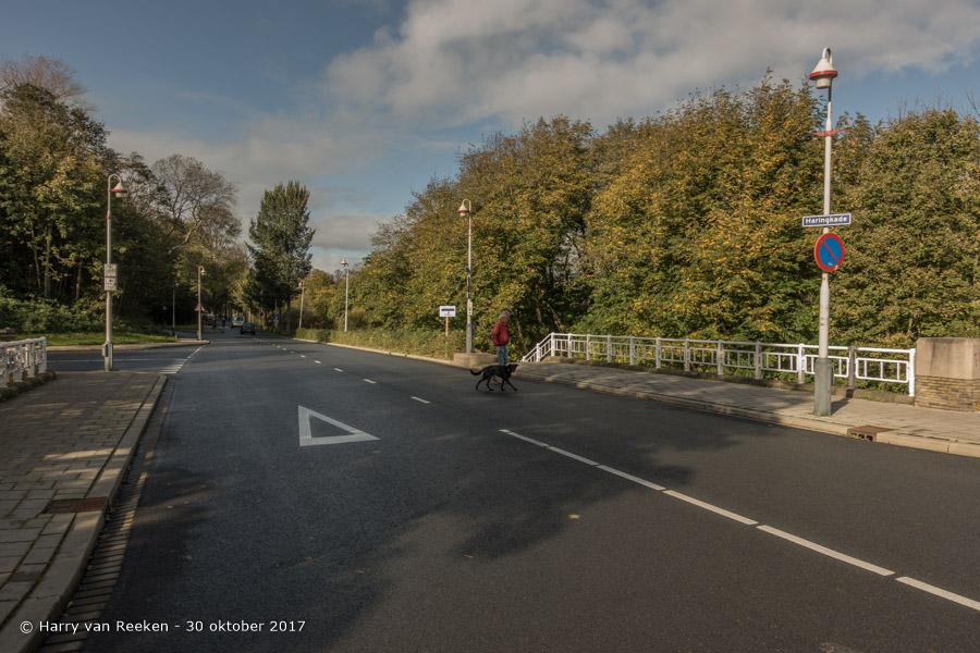 Haringkade - Westbroekpark-Duttendel-1