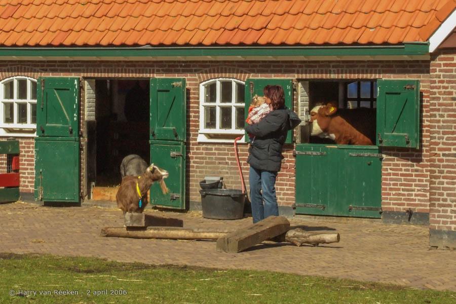 Havenkade - Stadsboerderij 't Waaygat - 5