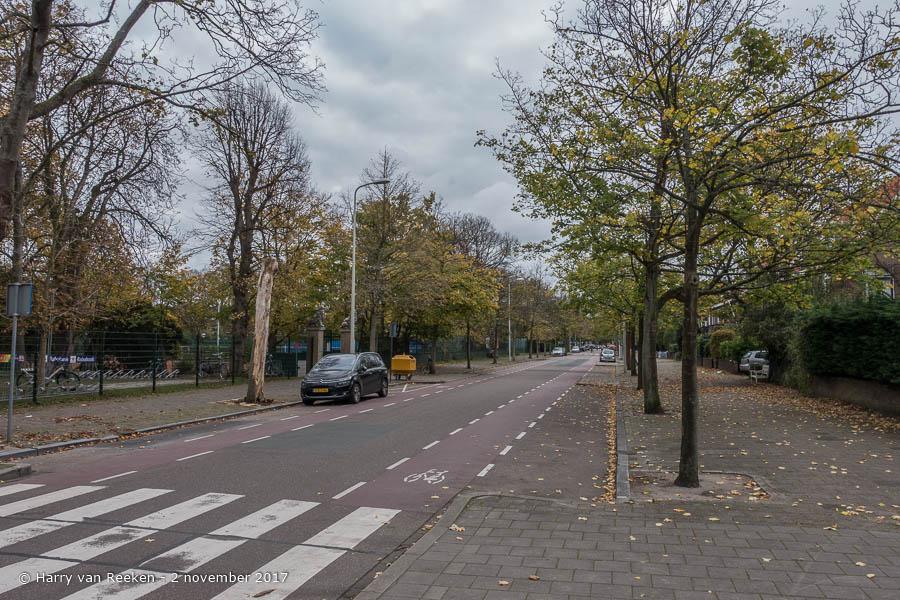 Hogenhoucklaan, van - Benoordenhout-17