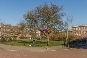 Hyacinthweg-wk12-09