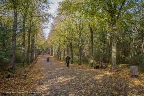 Kapellaan - Van Stolkpark-Schev.Bosjes -2
