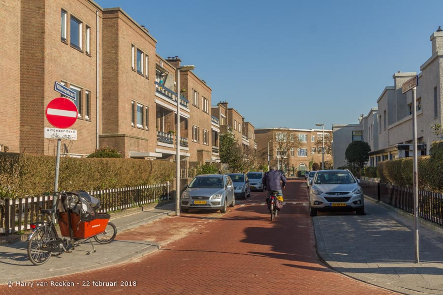 Klimopstraat-wk12-01