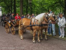 Koetsjes Lange Voorhout-26
