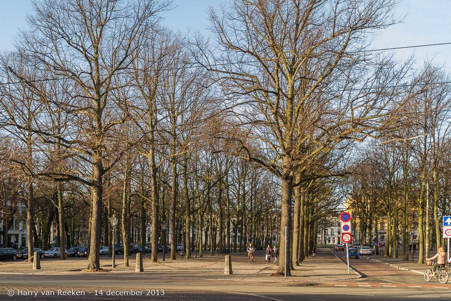 Lange Voorhout-14122013-01