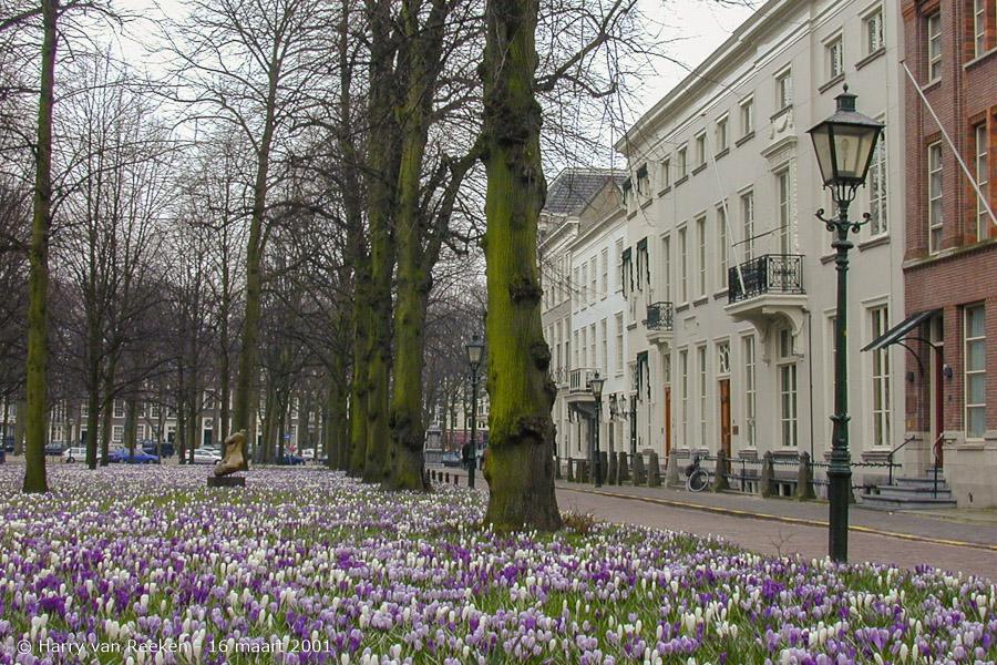 Lange Voorhout-16 maart 2001-4