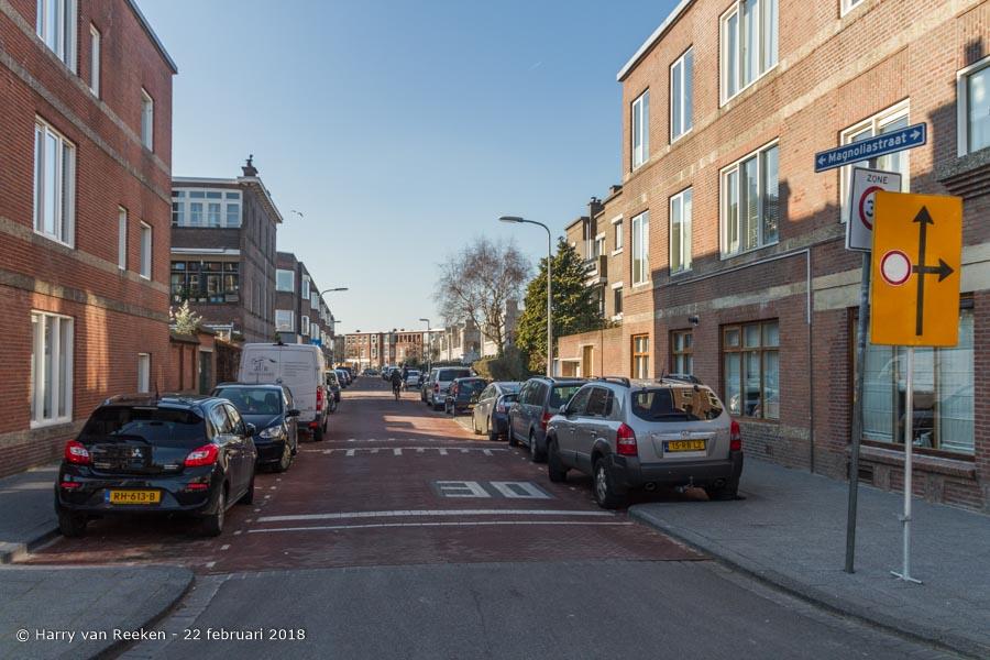Magnoliastraat-wk12-06