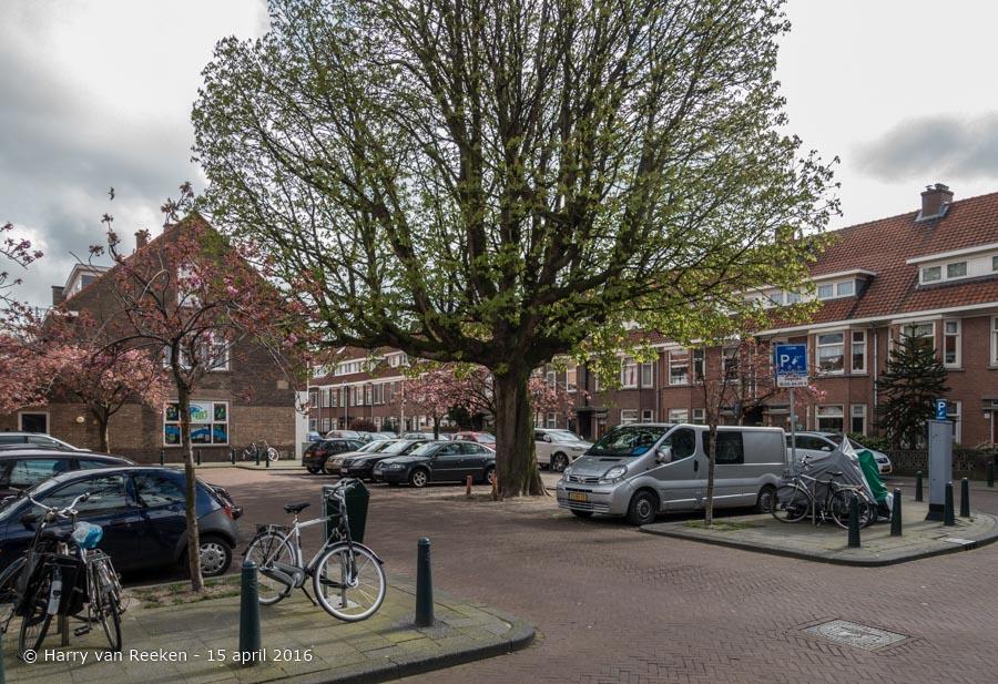 Miquelstraat-3