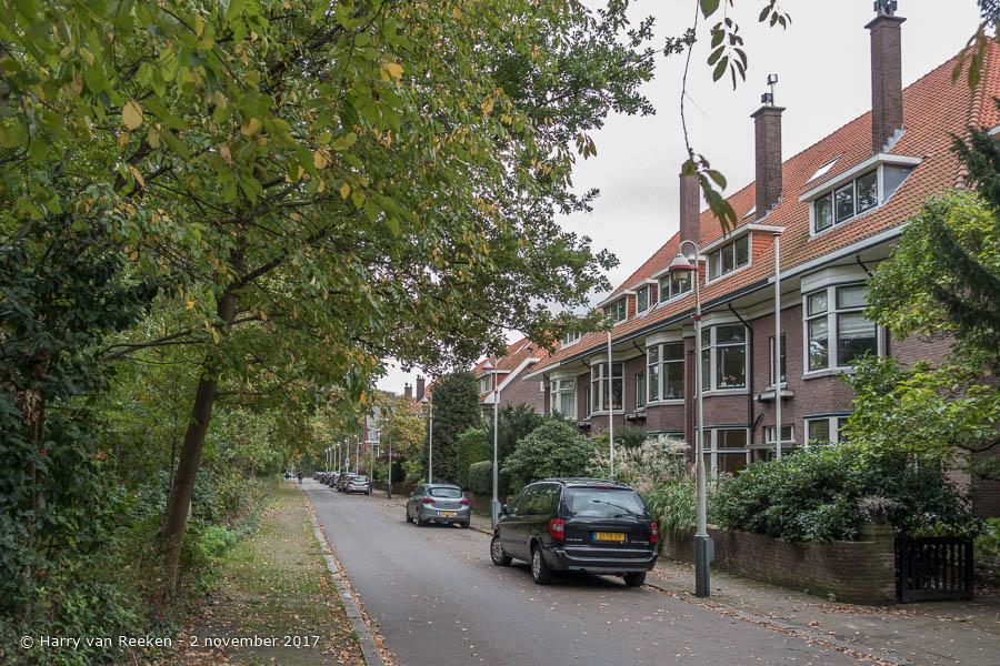 Montfoortlaan, van - Benoordenhout-3