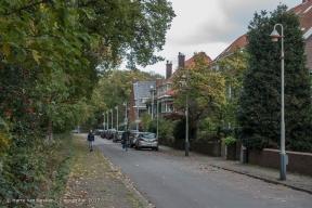 Montfoortlaan, van - Benoordenhout-4