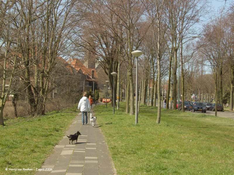 Nieuwe Parklaan 10179
