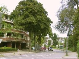 Nieuwe Parklaan 920