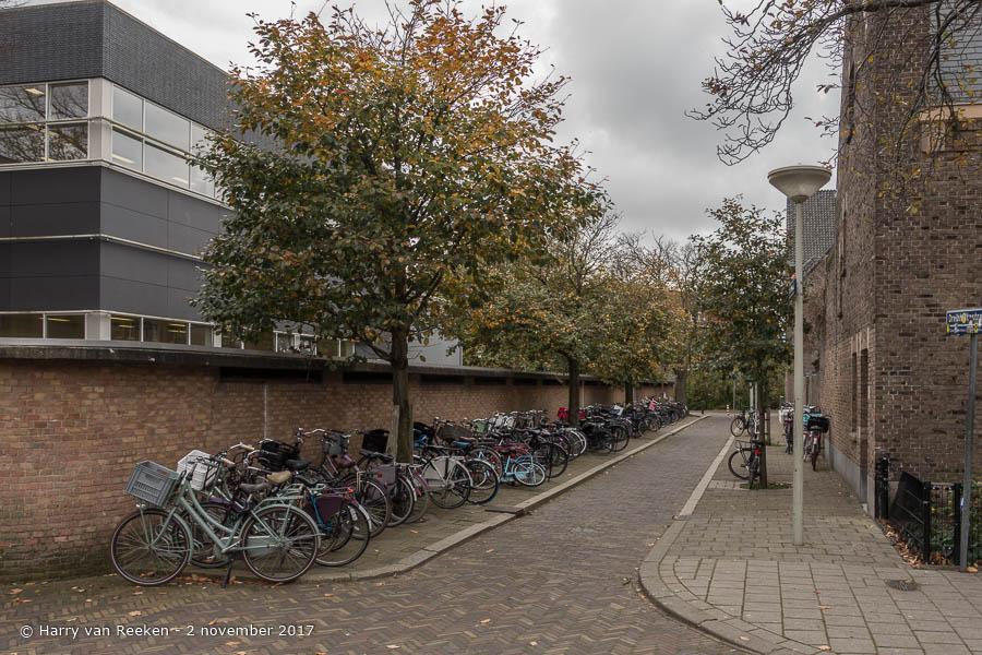 Paschalispad - Benoordenhout-1