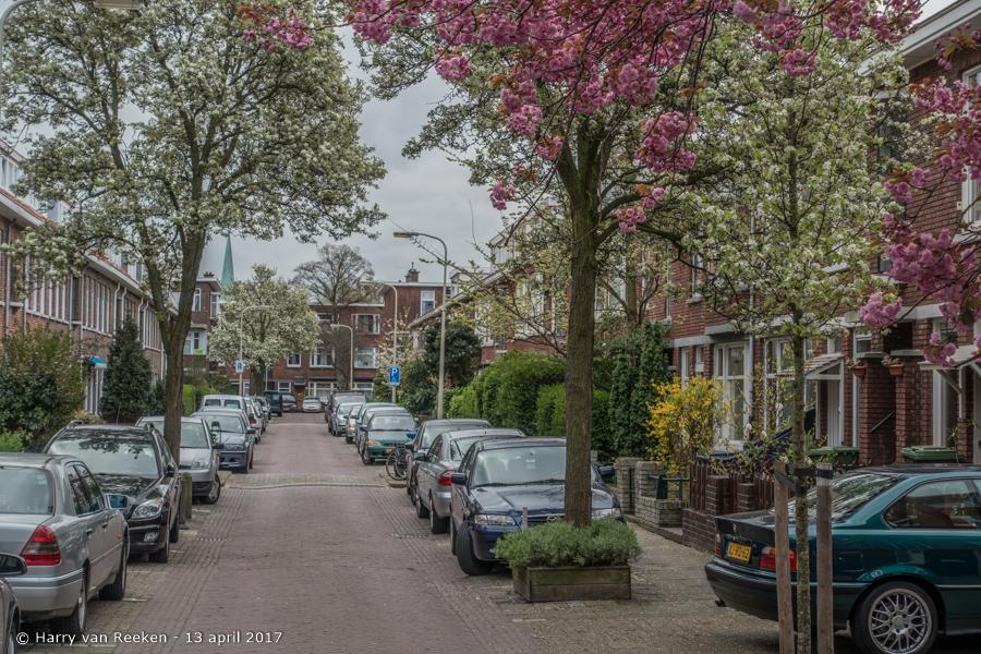 Piet Paaltjensstraat-3
