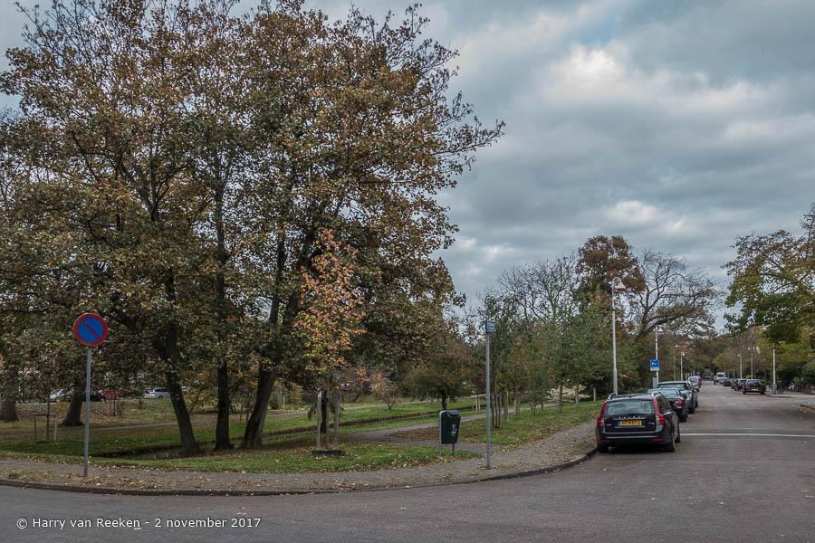 Ridderlaan - Benoordenhout-4