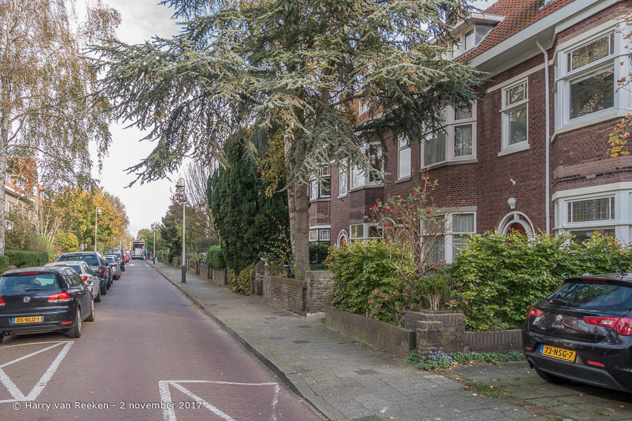 Roelofsstraat - Benoordenhout-4