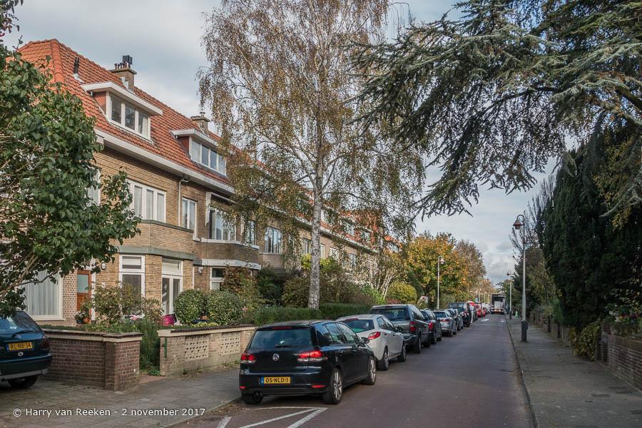 Roelofsstraat - Benoordenhout-6