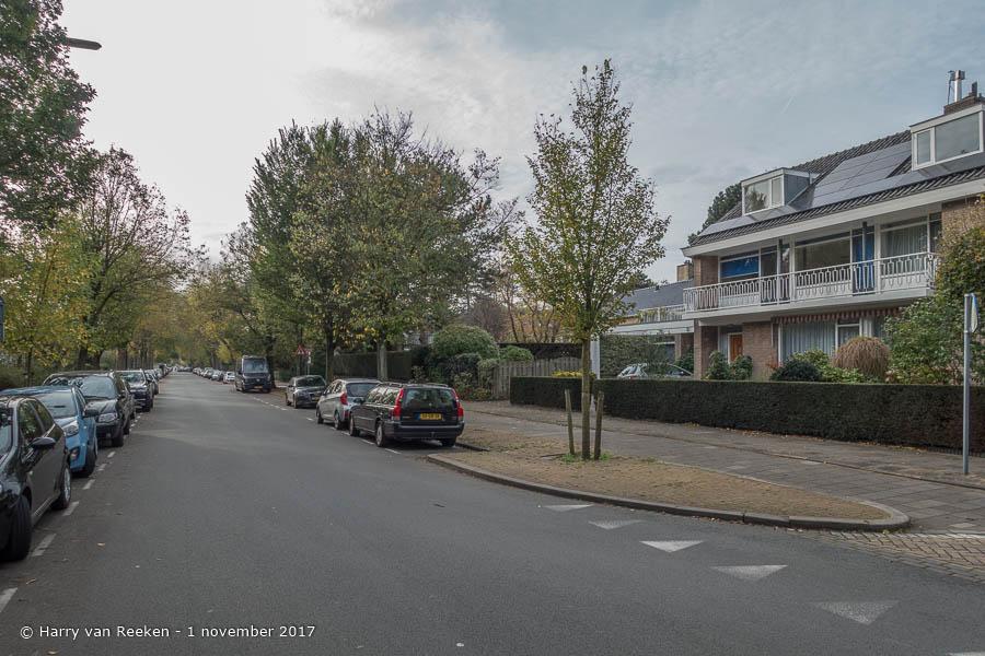 Ruychrocklaan - Benoordenhout-08