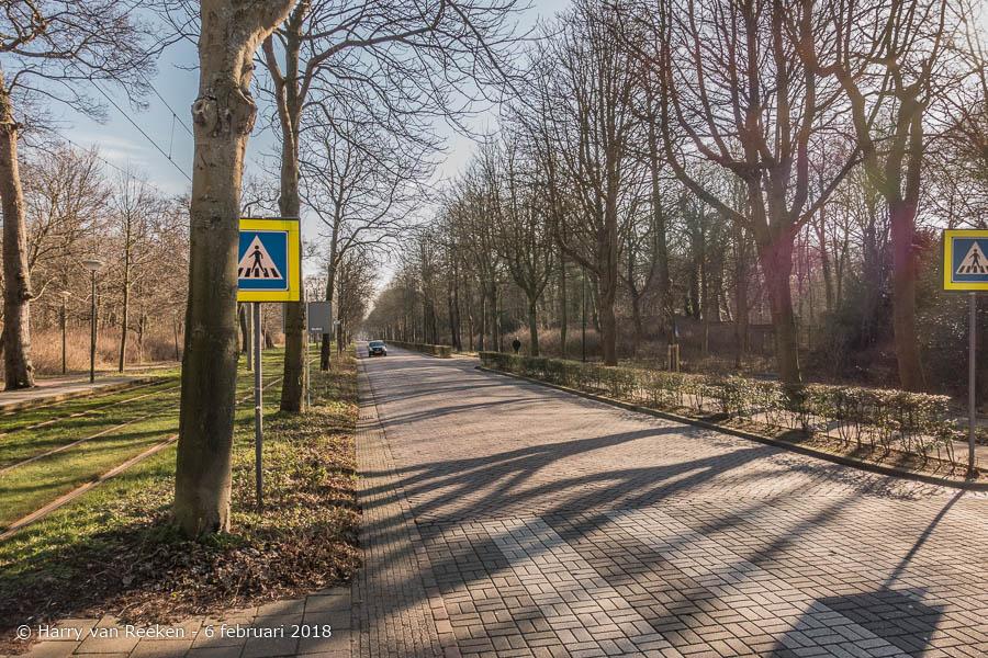 Scheveningseweg - Park Sorghvliet-wk10-1