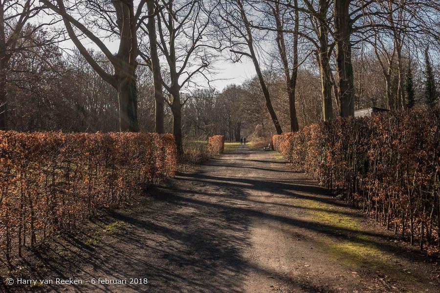 Scheveningseweg - Park Sorghvliet-wk10-4