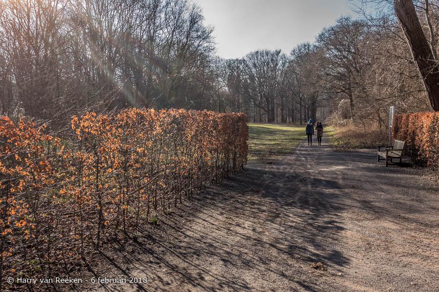 Scheveningseweg - Park Sorghvliet-wk10-5